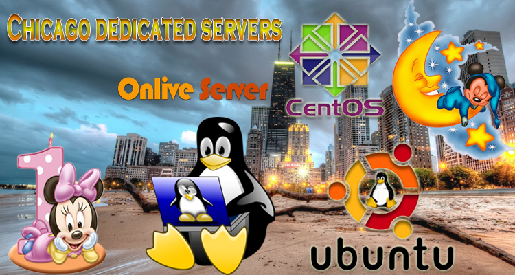 VPS Hosting in Chicago – Get Secure Chicago dedicated server for Your Business