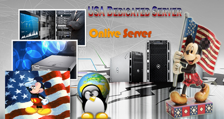 Who is Best USA Dedicated Server Provider for e-commerce Website?