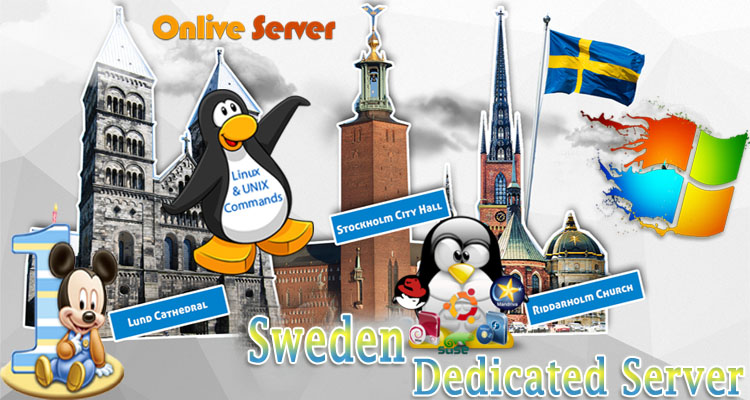 The Necessity of a Fully Managed Sweden Dedicated Server
