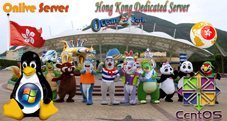 Information on VPS hosting and Managed Dedicated Servers Honk Kong