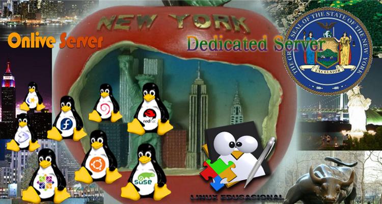 New York Dedicated Server1