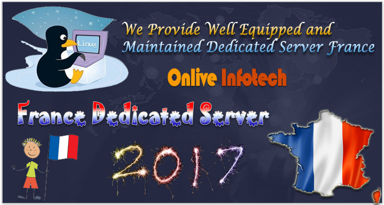 We Provide Well Equipped and Maintained Dedicated Server France