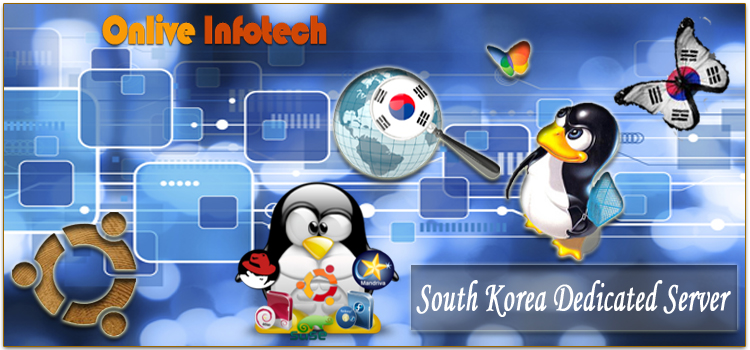 Get each and everything for your hosting Website with South Korea Dedicated Server