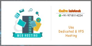 Onlive Infotech - Best Opportunity to Grow Your Business with USA Server Hosting