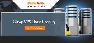 Linux VPS Hosting Server Suitable For Your Higher Traffic Websites