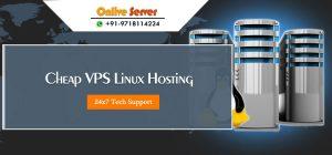 Linux VPS Hosting Server Suitable For Your Higher Traffic Websites