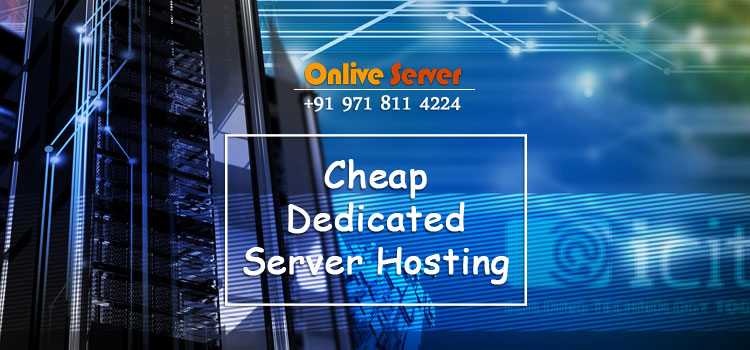 Our Cheap Dedicated Server Hosting Help Enhance The Profitability Your Business