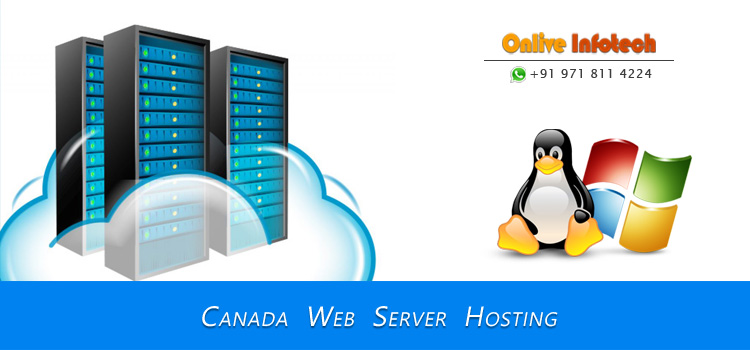 Canada Server Hosting Creates the Best Environment Around the Website