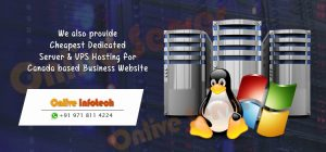 Cheapest Dedicated Server & VPS Hosting for Canada Business Website