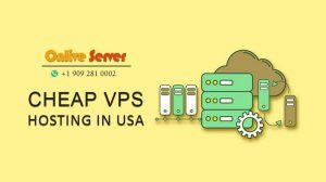 Reasons Why USA VPS Hosting Plans Are Perfect Web Hosting Option - Onlive Server