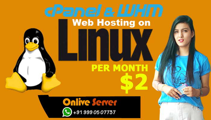 Prefer Cheap Web Hosting to Avail Numerous Benefits and Features
